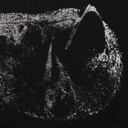 DEMON HEAD - Viscera LP...