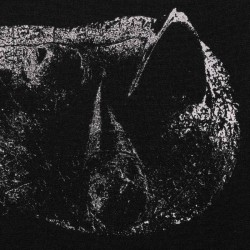 DEMON HEAD - Viscera LP
