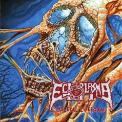 ECTOPLASMA - Skeletal...