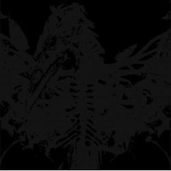 AMENRA - Mass II LP (Clear...