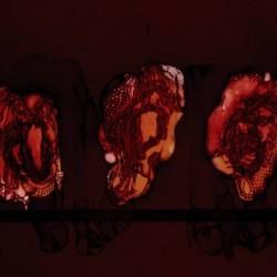 DEATHSPELL OMEGA - Kénôse LP